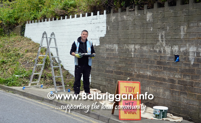 wall mural painting in balbriggan may19_2