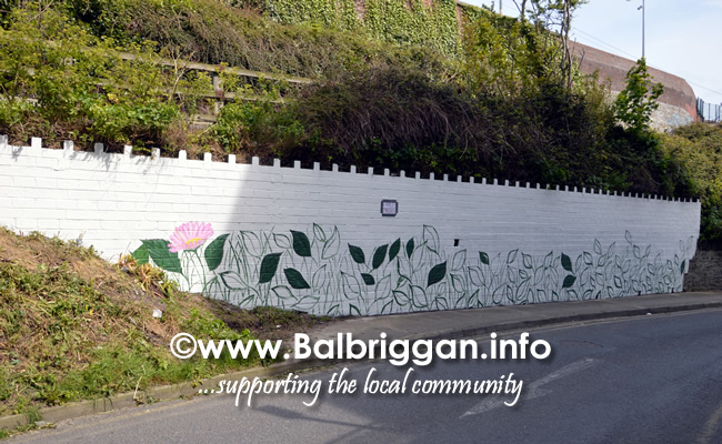 wall mural painting in balbriggan may19_3
