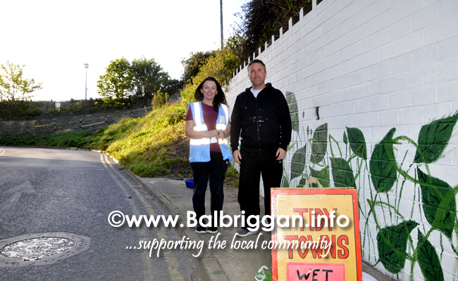 wall mural painting in balbriggan may19_4