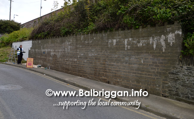 wall mural painting in balbriggan may19_5
