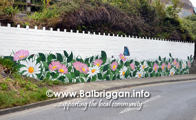 wall mural painting in balbriggan may19_6