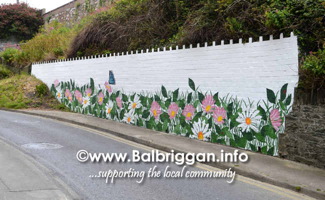 wall mural painting in balbriggan may19_7