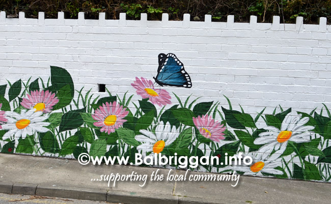 wall mural painting in balbriggan may19_8