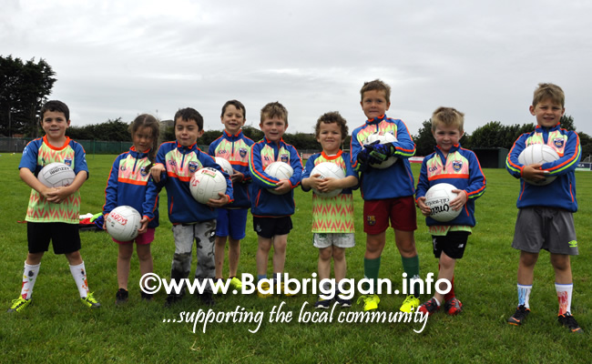 odwyers gaa cul camp balbriggan 17jul19