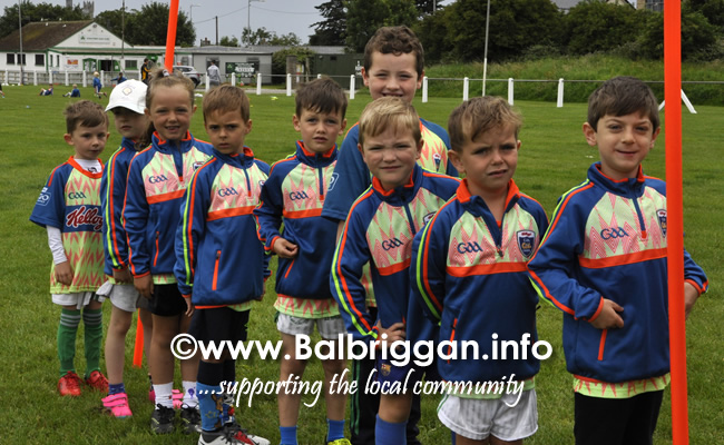 odwyers gaa cul camp balbriggan 17jul19_4