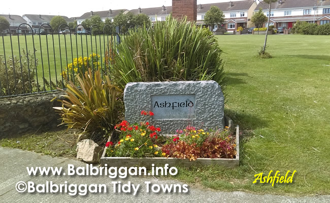 Ashfield Balbriggan