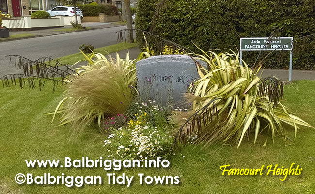fancourt heights balbriggan