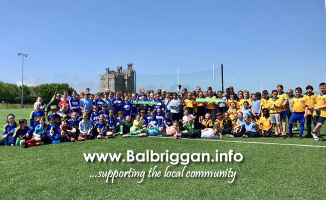 Fingal County Council secures €100,000 for community sports initiatives