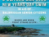 odwyers gaa club new years day swim 01jan20