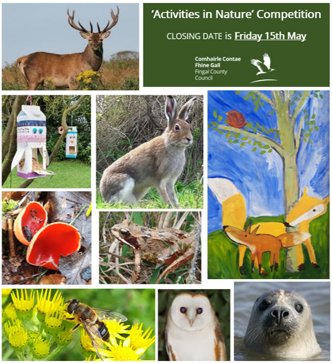 Fingal County Council launch Activities in Nature Competition