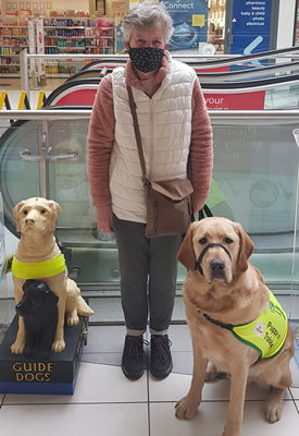 Anne Yarrow Large Dog guide dogs for the blind